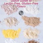 guide lectin free gluten free flours